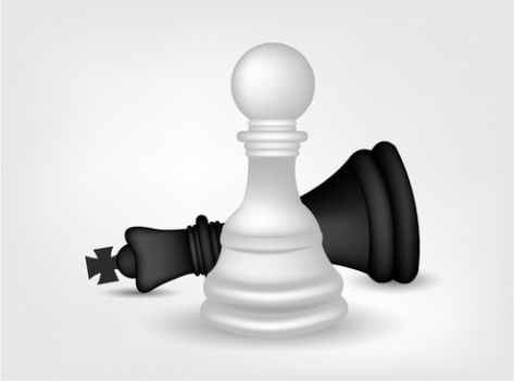 chess_pawn_and_king_312371